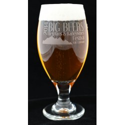 2014 Festival Beer Glass