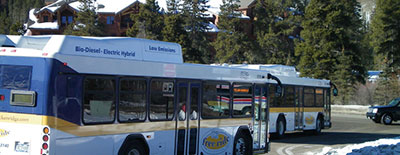 Free Ride Buses